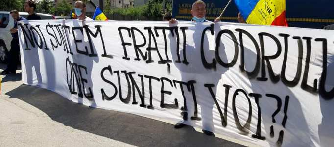 Partidul AUR cere viitorului Guvern să intervină de urgență pentru oprirea defrișărilor ilegale: Codrul e frate cu românul, nu cu securea