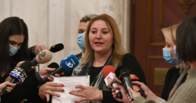 Circul lui Șoșoacă bruiază mesajul politic al AUR