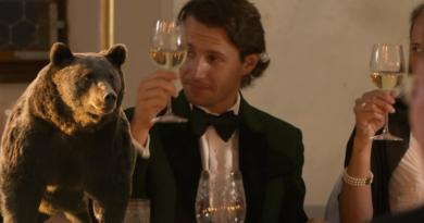 Ne-au tăiat pădurile, acum ne ucid urșii: Un prinț din Austria l-a ucis pe Arthur, cel mai frumos exemplar de urs carpatin din România